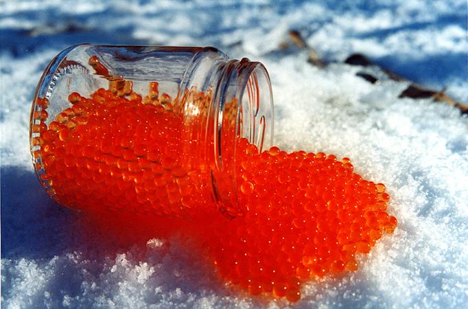 Prodotti di qualit per il pranzo di natale for Uova di pesce rosso