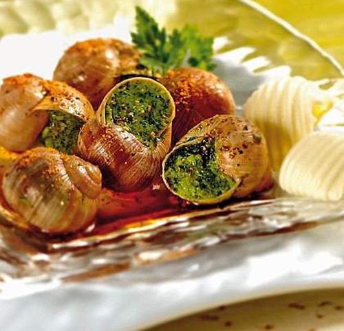 Dall allevamento a come cucinarle le lumache for Cucinare le lumache