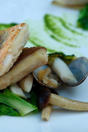 Ricette alta cucina trancio di gallinella arrosto for Ricette alta cucina