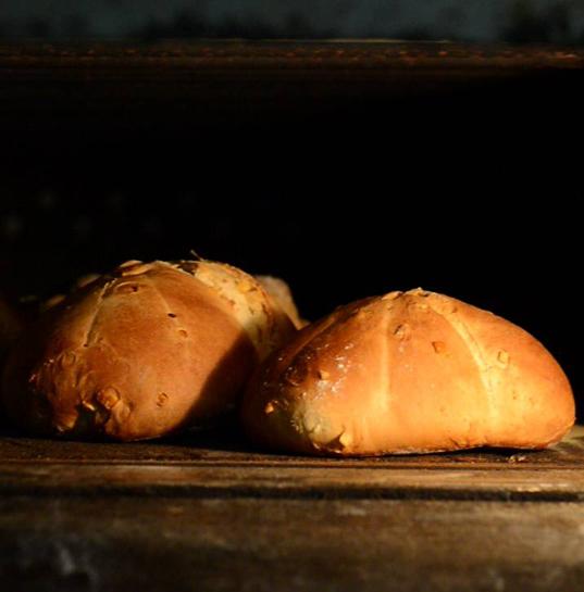 le ricette dei pani degli antichi romani